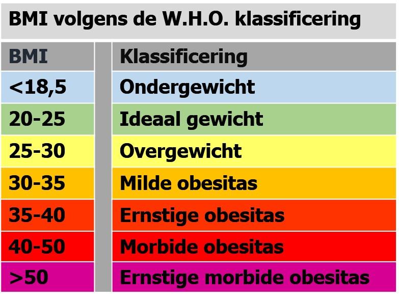 bmi overgewicht
